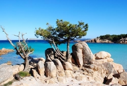 A stone's throw from us, the most beautiful beaches with crystal clear water - Your Holiday In Costa Smeralda